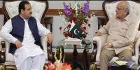 Interior Minister And Cm Punjab Agreed On Action Against Law Enforcement Elements