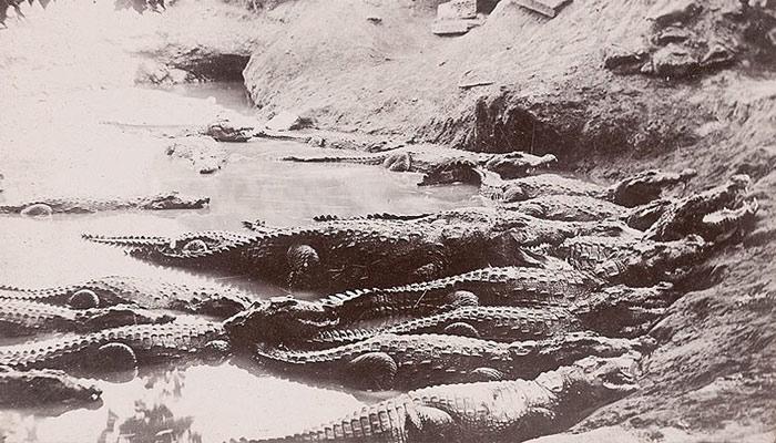 منگھو پیرکراچی کا قدیم ترین علاقہ