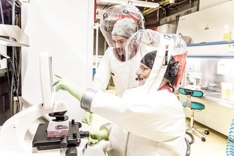 جاپان میں خطرناک وائرس کی درآمد