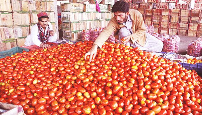 کراچی میں ٹماٹر 275 روپے کلو ہوگیا