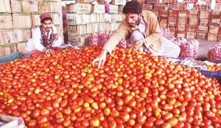 Tomato Price High Jump In Karachi