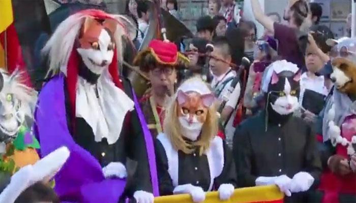 جاپان کی سڑکوں پر قد آدم بلیاں نکل آئیں