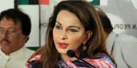Sherry Rehman Says Government Doing Politics Over Asif Ali Zardari Illness