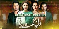 Brilliant Ending Of Geos Most Popular Drama Serial Dil E Gumshuda