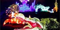 Sea Creature Lanterns Fill Paris Garden In Light Display Facebook