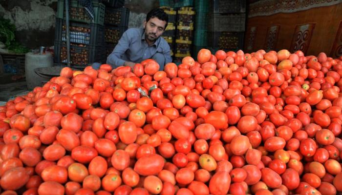 سندھ میں ٹماٹر کی قیمتیں نیچے نہ آسکیں