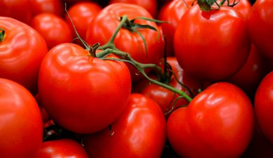Tomatoes Price Decreases Rs 100