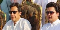 Faisal Javed Interprets Pm Statement