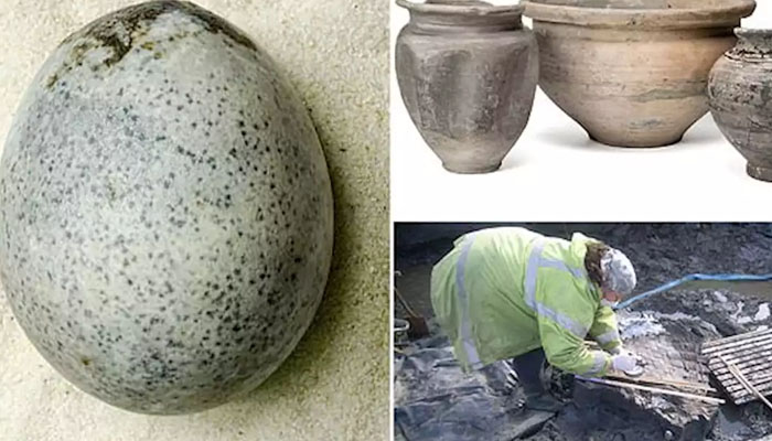 برطانیہ : 1700 سال قدیم انڈا دریافت