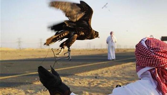 بلوچستان: تلور کا شکار، 35 کروڑ کی آمدنی متوقع