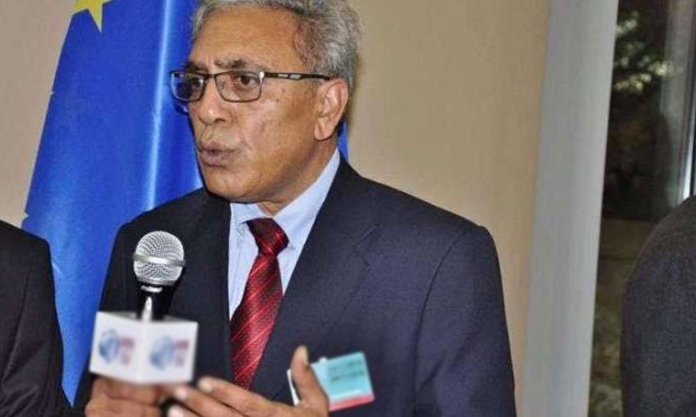 مقبوضہ کشمیر میں انسانی حقوق بحال کروائے جائیں، علی رضا سید
