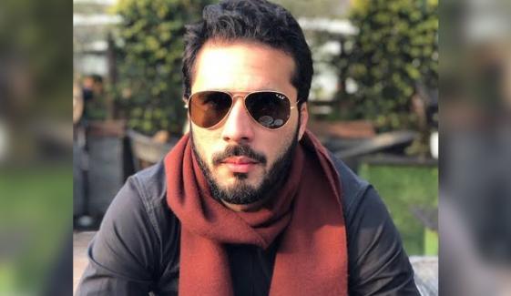 وزیر اعظم نے حسان نیازی کی گرفتاری پر پابندی نہیں لگائی، شاہ محمود