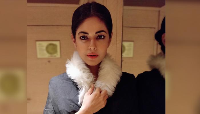 بھارتی اداکارہ پاکستانی ڈراموں کی 'فین' ہوگئیں