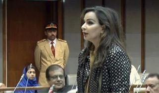 Mobile Companies Irritated Subscribers Sherry Rehman