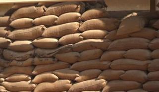 ٹھٹھہ: محکمہ خوراک کے گوداموں سے گندم کی 10ہزار بوریاں غائب