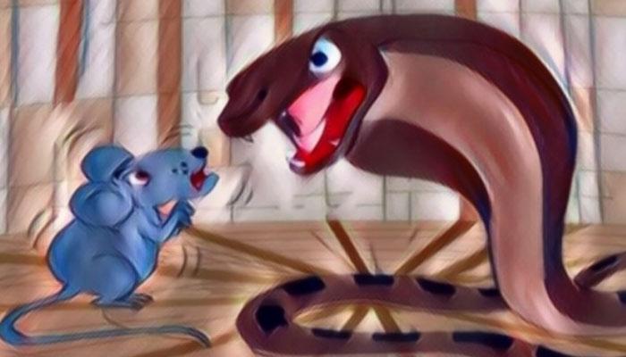 سانپ اور چوہے کی لڑائی