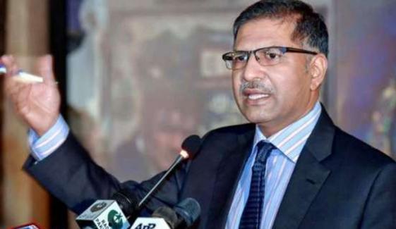 انور منصور نے سماعت کے دوران عدلیہ پر الزام لگا یا جس پر استعفیٰ دینا پڑا، علی ظفر