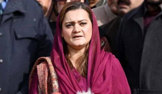 پنجاب حکومت پر دباؤ ڈال کر زبردستی فیصلہ کروایا گیا، مریم اورنگزیب
