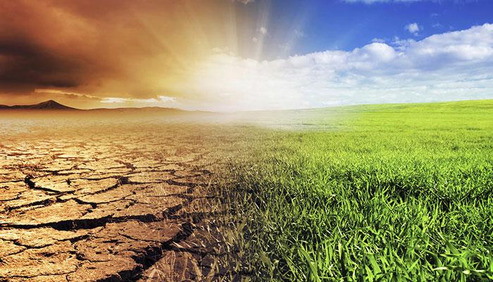 ماحولایات کی بہتری انسانوں کیلئے ضروری