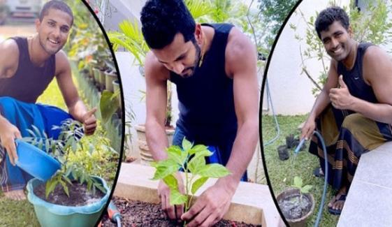 سری لنکن کھلاڑیوں نے باغبانی کا مشغلہ اپنالیا