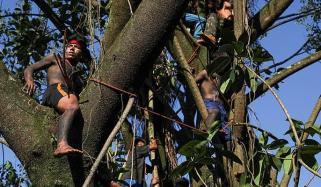 کورونا سے ایمازون قبائل کے خاتمے کا خدشہ