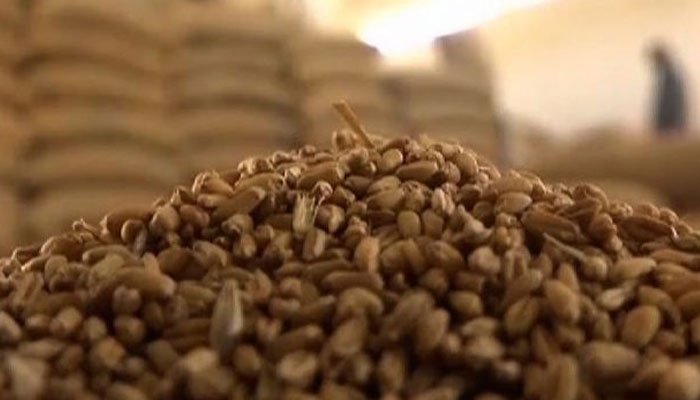 جیکب آباد میں رائس ملز پر چھاپہ، ذخیرہ کی گئی گندم برآمد