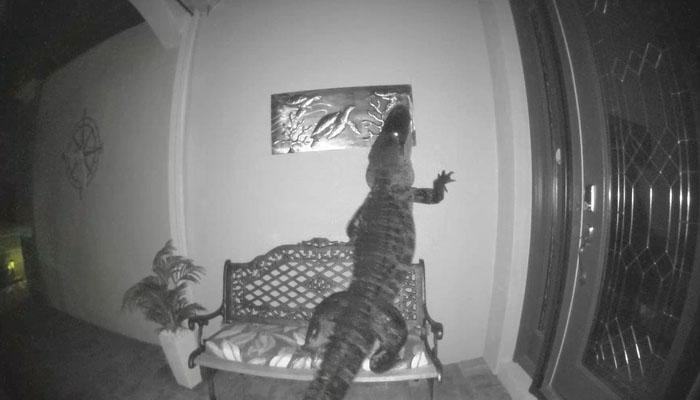 گھر کی گھنٹی میں لگے کیمرے نے خوف ناک منظر محفوظ کر لیا