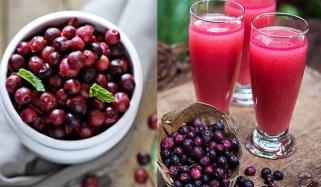 گرمیوں میں فرحت بخش فالسہ شربت ضرور پیئں