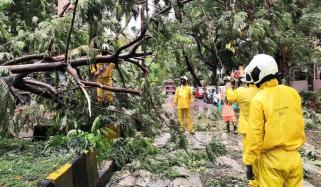 نرسگا طوفان بھارتی ریاست مہاراشٹرا سے ٹکرا گیا