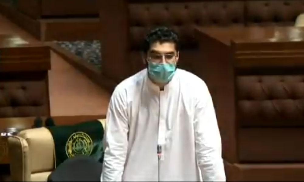 گزشتہ روز سندھ اسمبلی میں جو ہوا اس پر بہت دکھ ہے: حسنین مرزا