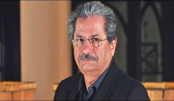 شفقت محمود کا فضل الرحمٰن۔آصف زرداری ملاقات پر تبصرہ