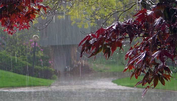 لوئردیر اور ہرنائی میں موسلادھار بارش