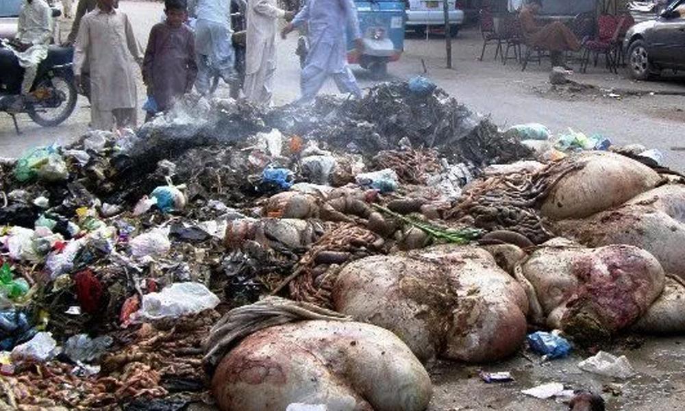 کراچی: محمود آباد نمبر 6 میں روڈ پر آلائشوں کے ڈھیر