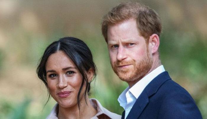 شہزادہ ہیری اپنے اور اہلیہ کے بارے میں تلخ تبصروں پر دلبرداشتہ