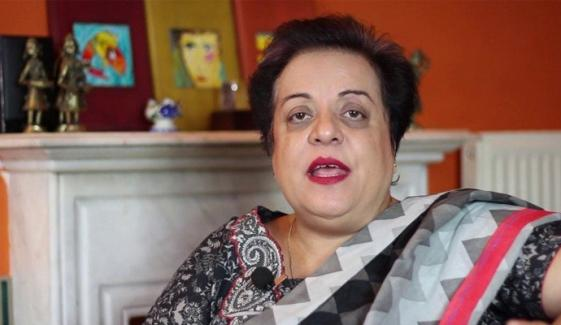 'وزیراعظم نے کشمیر کا بیانیہ بدل کر دکھایا'