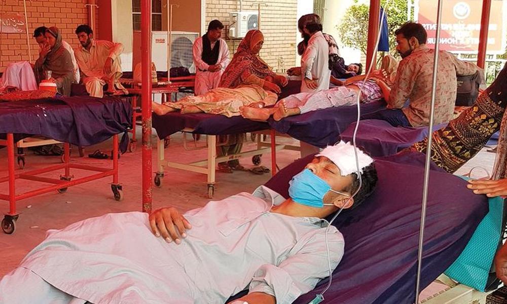 سندھ، ڈینگی سے متاثرہ افراد کی تعداد 767 تک جاپہنچی