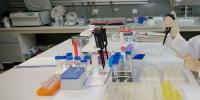 متاثرہ لڑکی کے DNA سیمپلز مسترد