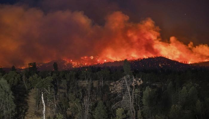 کیلیفورنیا : جنگلات میں آتشزدگی، ہلاکتوں کی تعداد 4 ہوگئی