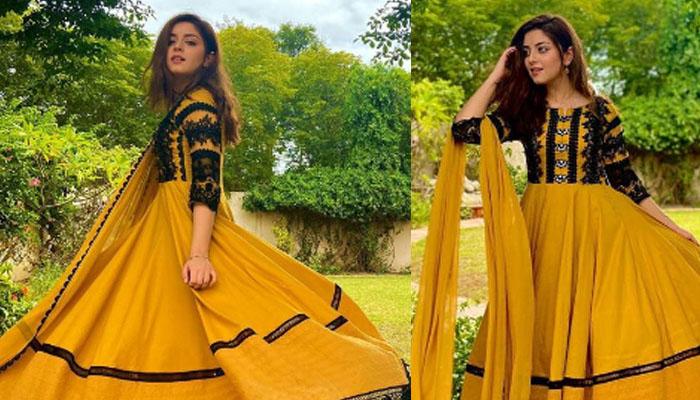 علیزے شاہ کی نئی تصاویر وائرل
