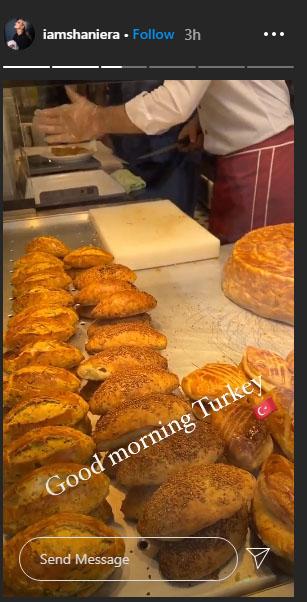 شنیرا ترکی چلی گئیں؟