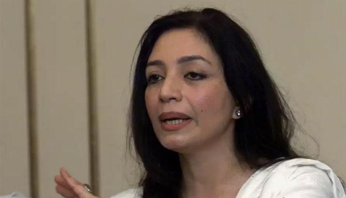شہباز شریف کی قید پر مجھے سخت دھچکا لگا، تہمینہ درانی