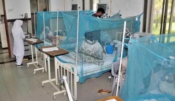 کراچی: ڈینگی، موسمی بخار اور ملیریا کیسز میں اضافہ