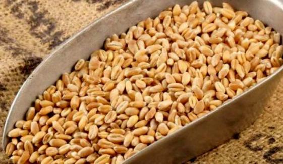 16 لاکھ 81 ہزار میٹرک ٹن گندم پاکستان پہنچ چکی، وزارت نیشنل فوڈ سیکورٹی