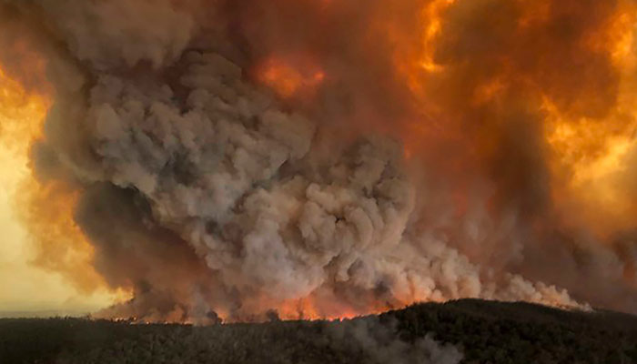 آسٹریلیا: جنگلات میں لگی آگ 6 ہفتوں بعد بھی بے قابو