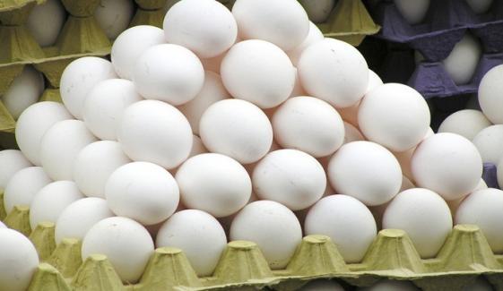 سردی آتے ہی مرغی کے انڈوں کی قیمت کو پر لگ گئے