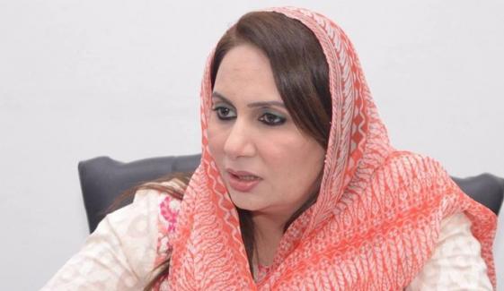 ن لیگی ارکان اسمبلی کو عوامی غضب کا سامنا ہے، ترجمان پنجاب حکومت