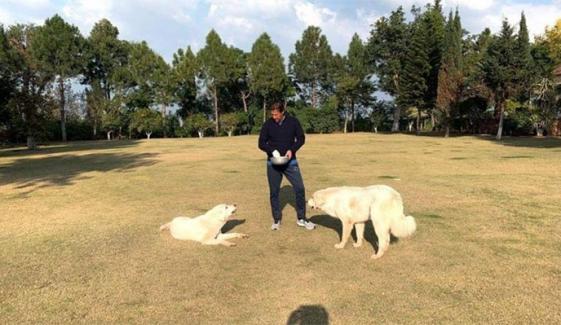 عمران خان نے بنی گالہ میں اپنے پالتو کتوں کے ساتھ وقت گزارا