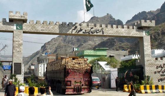 ریچھ کے 2 بچوں کی پاکستان اسمگلنگ کی کوشش ناکام