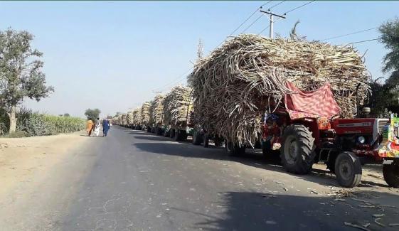 بہاولپور: شوگر ملز کے سامنے گنے سے لدی گاڑیوں کی لمبی لمبی قطاریں