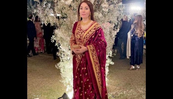 شرمیلا فاروقی کی دلکش تصویر صارفین کو بھاگئی